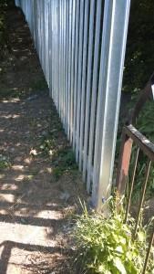 New Fence - 11.06.15 (3) Boundary