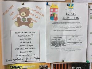 IMG_0417 teddy Bears