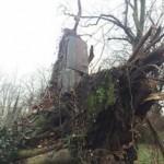 17155923_ Storm Doris 2017 March Wednesfield Grave yard